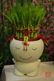 Taiwan 2012 - Taipei - Jianguo Holiday Flower Market - Bambusmänchen