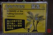Taiwan 2012 - Taipei - Konfuziustempel - Kokosnusswarnung