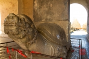 Ming tombs - Turtle