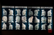 Xian 2013 - Terracotta Army - Diversity of sculptures