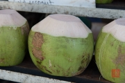 Malaysia 2013 - Penang - Coconut