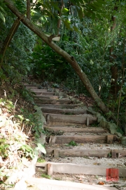 Malaysia 2013 - Penang - Spice Garden - Wooden Stairs I