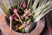 Malaysia 2013 - Penang - Spice Garden - Spices