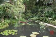 Malaysia 2013 - Penang - Spice Garden - Pond