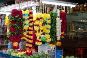 Singapore 2013 - Little India - Flowers
