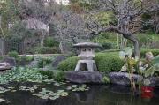 Japan 2012 - Kamakura - Hase-dera - Pond