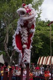 Taiwan 2012 - Taipei - Lin-Namens-Fest - Löwentanz - Stand