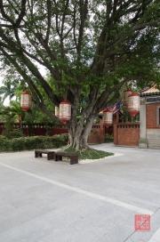 Taiwan 2012 - Taipei - Konfuziustempel - Baumlaternen