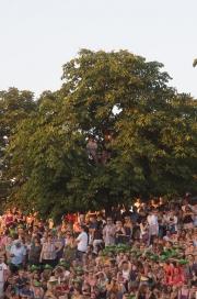 Das Fest 2013 - Treeguests