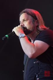 Das Fest 2013 - Soehne Mannheims - Henning Wehland II