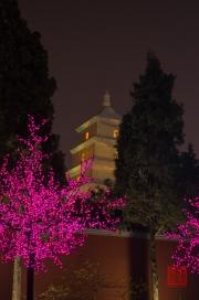 Xian 2013 - Giant Wild Goose Pagoda & LED Tree by Night