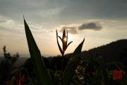 Malaysia 2013 - Penang - Sunset I