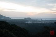Malaysia 2013 - Penang - Sunset - Forest