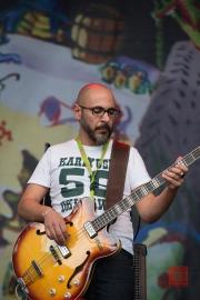 Bardentreffen 2014 - Pippo Pollina - Bass I
