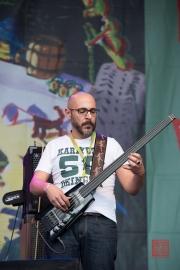 Bardentreffen 2014 - Pippo Pollina - Bass II