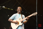 Bardentreffen 2014 - Habib Koite - Guitar