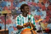 Bardentreffen 2014 - Habib Koite - Percussions