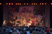 Bardentreffen 2014 - Billy Bragg