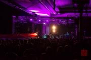 Brueckenfestival 2014 - The Animen
