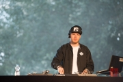 Brueckenfestival 2014 - Damion Davis - DJ