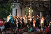 Brueckenfestival 2014 - Damion Davis II