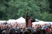 Brueckenfestival 2014 - Damion Davis IV