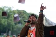 Brueckenfestival 2014 - Damion Davis VII