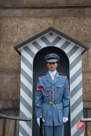 Prague 2014 - Castle Guard