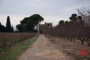 Perpignon 2014 - Old Farm II