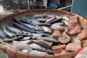 Hongkong 2014 - Tao-O - Dry fish II
