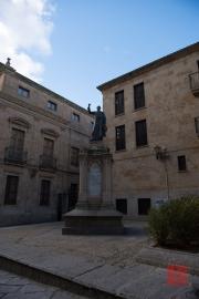 Salamanca 2014 - Padre Camara