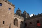 Salamanca 2014 - Cathedral Roof