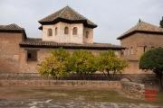 Granada 2015 - Alhambra - Orange Trees