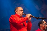 Bardentreffen 2015 - Fanfare Ciocarlia - Oprică Ivancea II