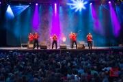 Bardentreffen 2015 - Fanfare Ciocarlia I