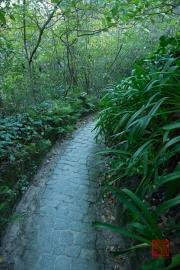 Sintra 2015 - Quinta da Regaleira - Path