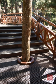 Taiwan 2015 - Alishan - Bridge - Treehole