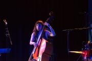 Künstlerhaus Elysian Fields 2016 - Bass