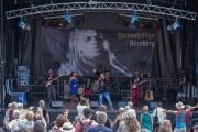 Bardentreffen 2016 - Damily II