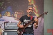 Bardentreffen 2016 - Celso Piña - Bass I