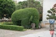 Hue 2016 - Elephant Bush